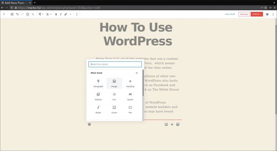 WordPress dashboard interface for writing a new post